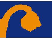 Dutch School Stiftung Sprachkurse Deutsche Schule Den Haag